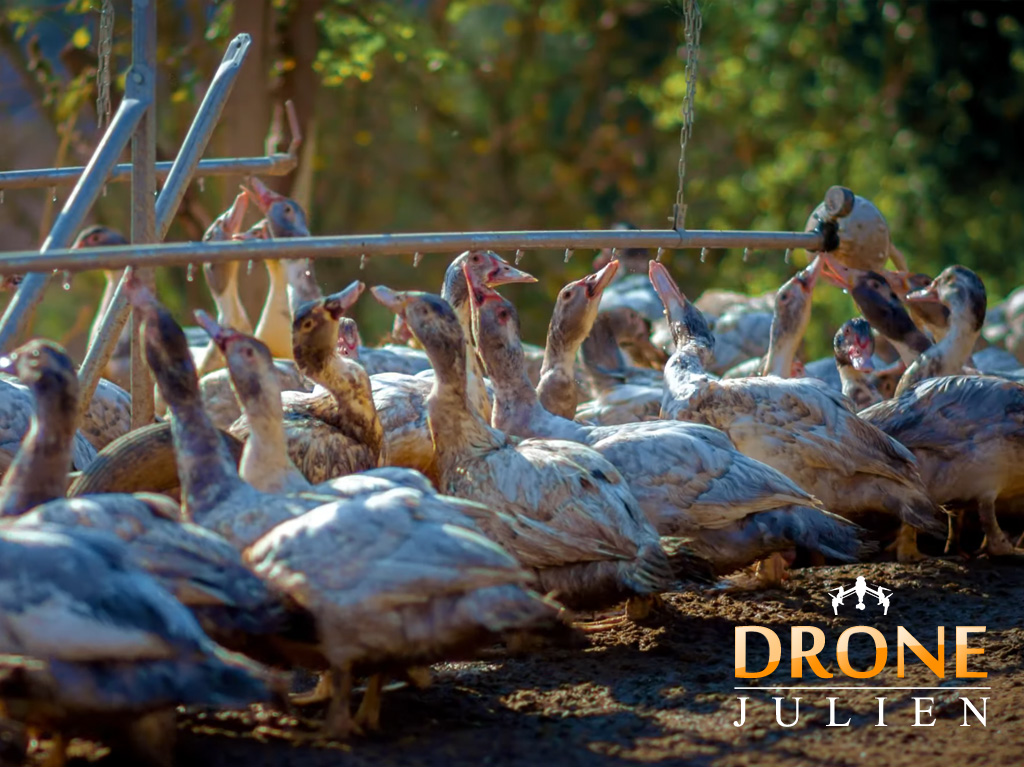 Réalisation vidéo agriculture